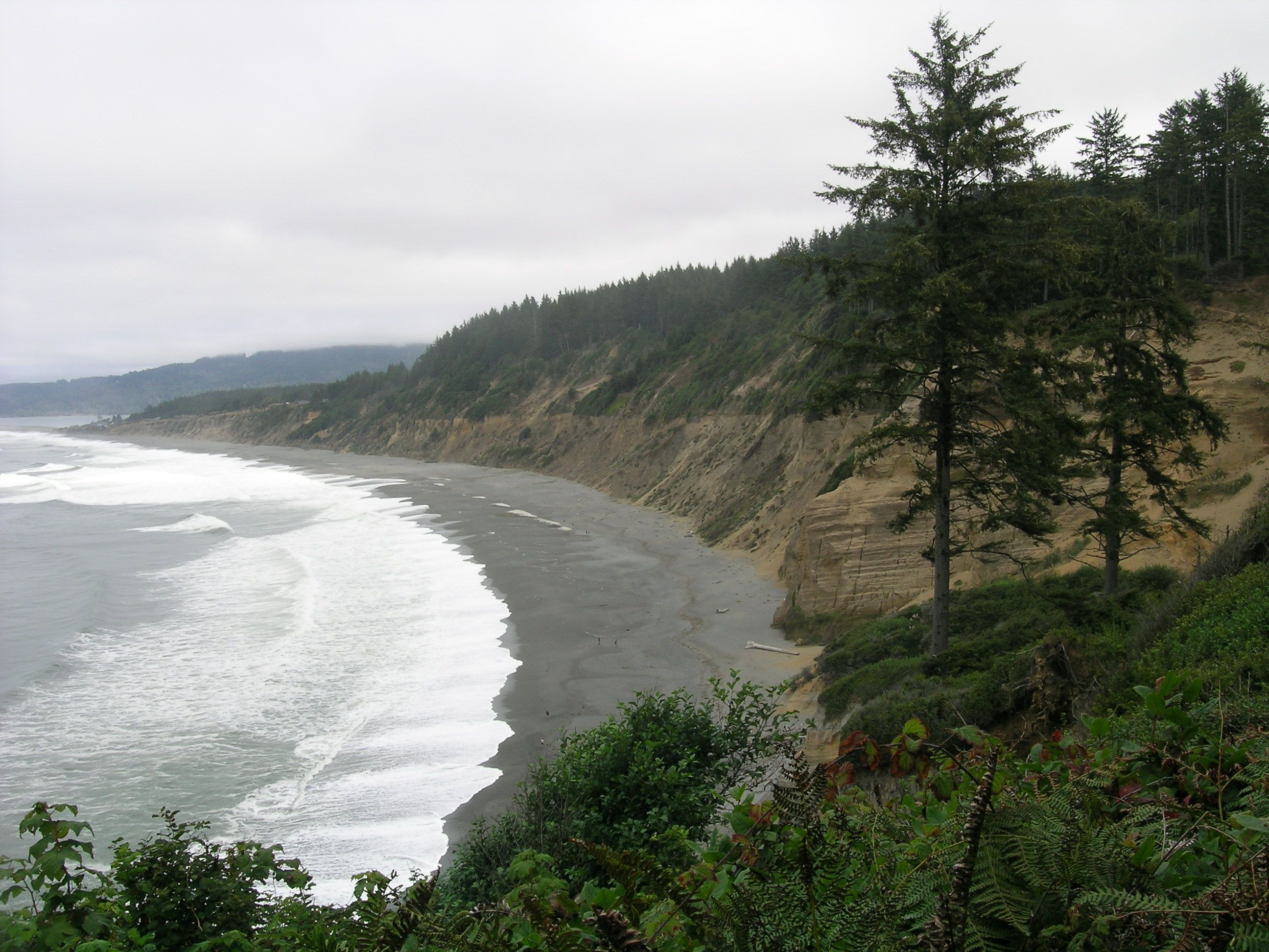 The Agate Beach Trail Head Is Within Patrick S Point State Park On Far Side Of Campground Parking