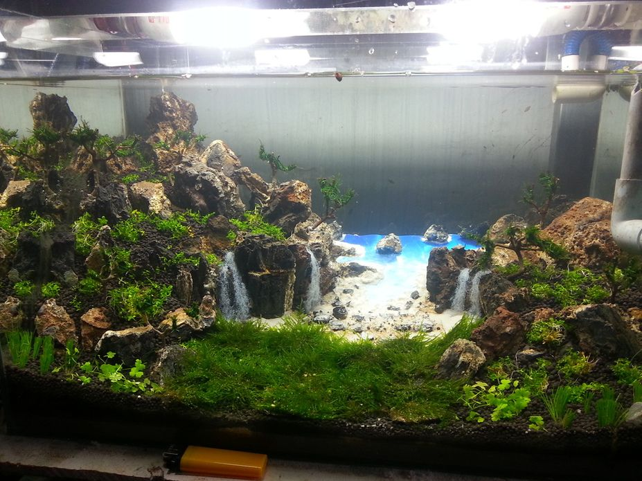 Tropical beach with beautiful waterfalls aquascaping for Aquarium waterfall decoration