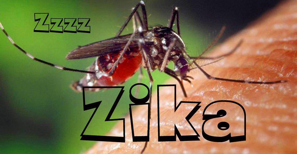 O Que se Sabe (e o Que Falta Saber) Sobre Relação Entre Zika Vírus e Microcefalia