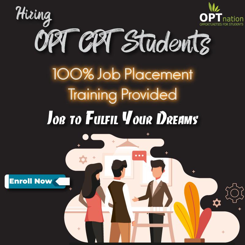 Job Placement For Entry Level Graduates Experience Job Placement Graduate Jobs Career Guidance