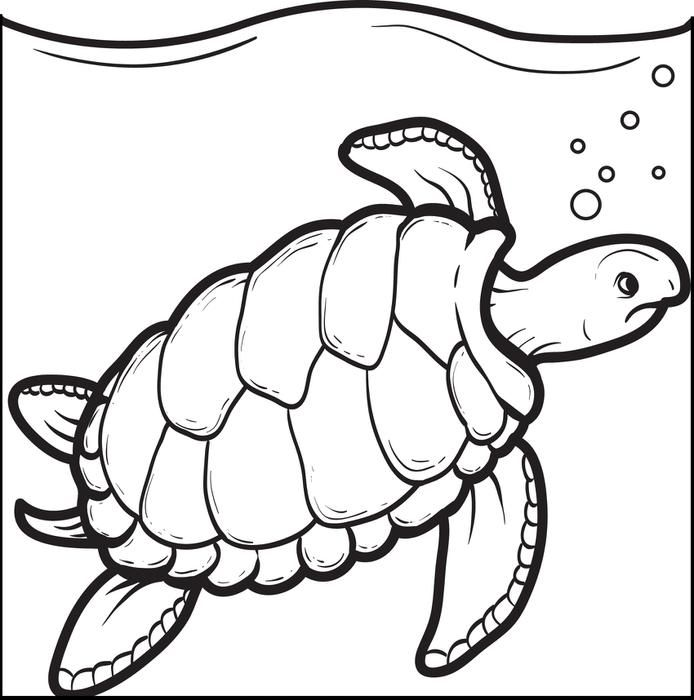 Swimming Turtle Coloring Page Animal Coloring Pages Coloring
