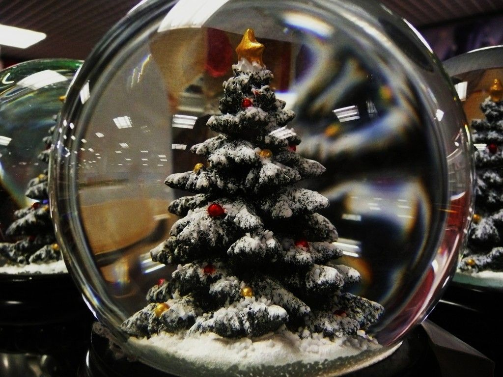árbol navidad 24
