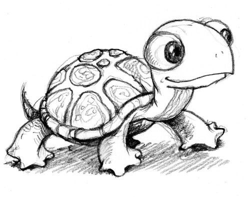 Cute drawing of a turtle might try to draw it
