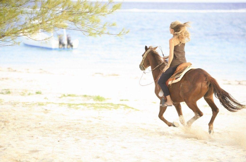 Ride a horse on the beach bucket list pinterest horseback ride a horse on the beach sciox Images