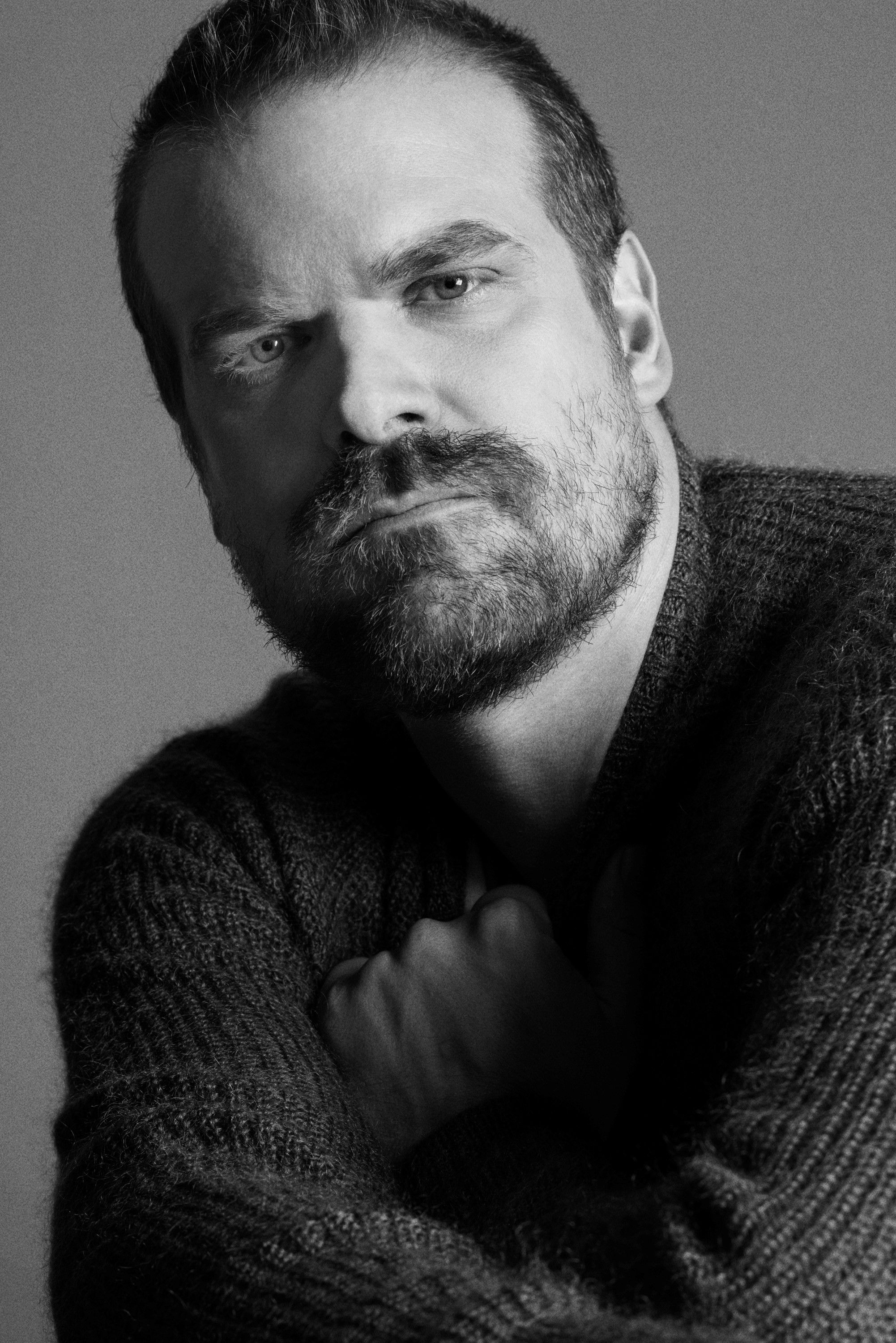 Image result for david harbour body