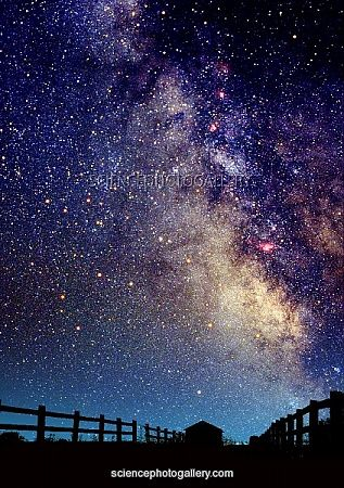 Night Sky Composite photograph of a summer Milky Way and a