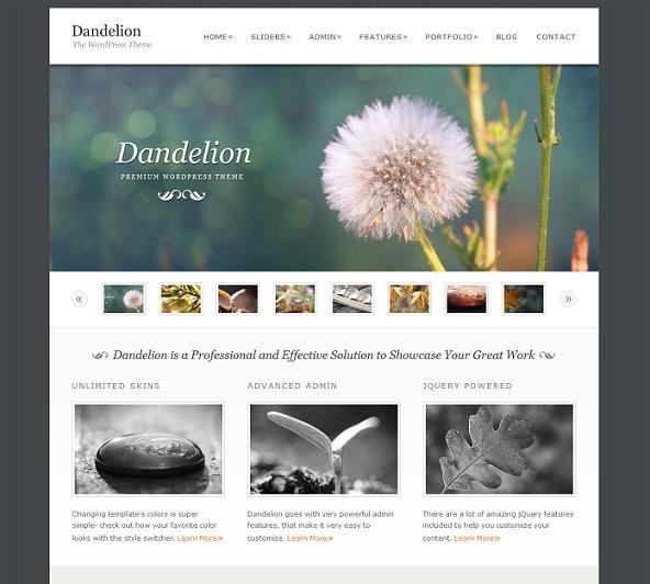 The Best Free Premium Minimalist Portfolio Wordpress Themes