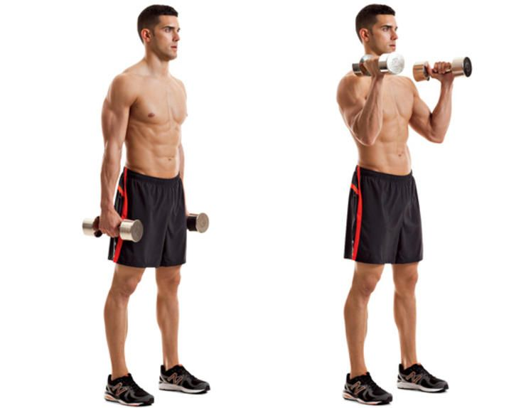 The 23 Best Biceps Exercises | Biceps, Exercises and Workout