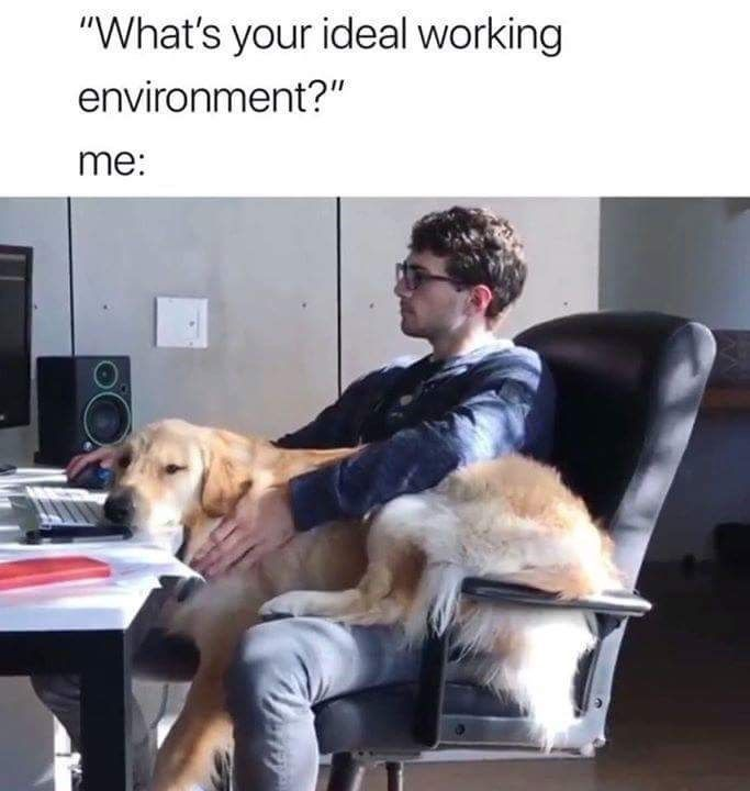 33 Office Memes For Anyone Just Trying To Make It Through The Monday Blues