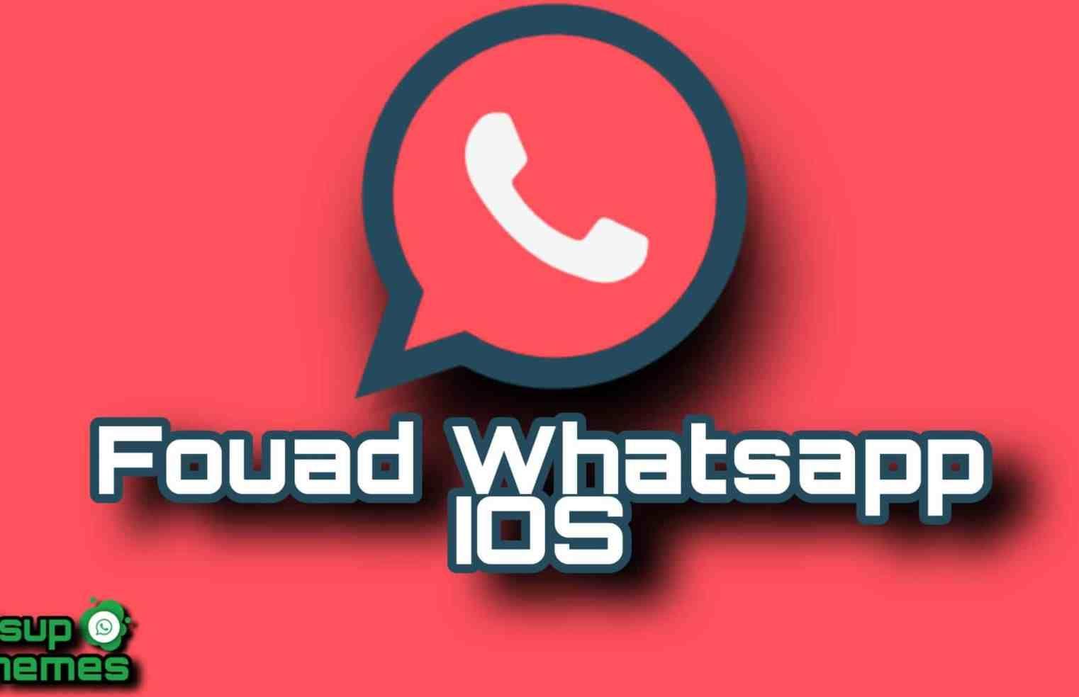 Fm Whatsapp App Download 8.35