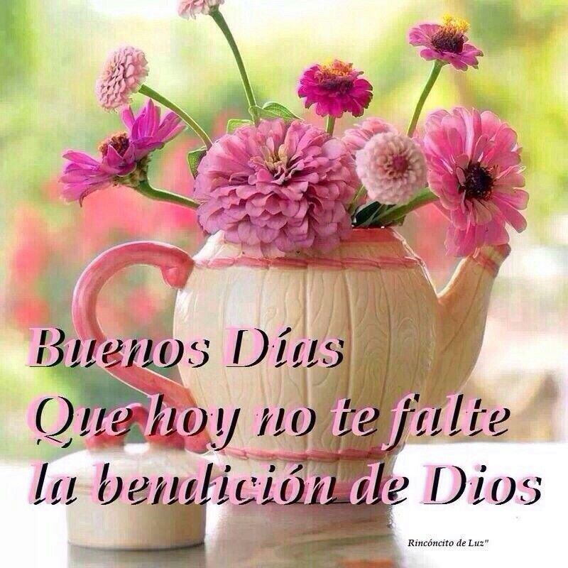 Buenos dias! Que hoy no te falte la bendición de Dios.