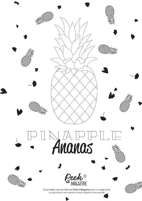 Coloriage Ananas Pineapple Co Pineapple Illustration