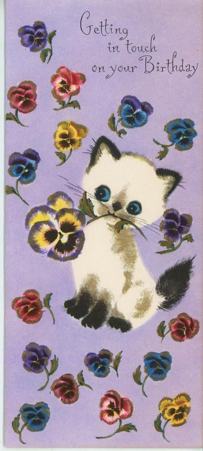 Vintage Siamese Cat Birthday Card With Pansies Siamese Cards