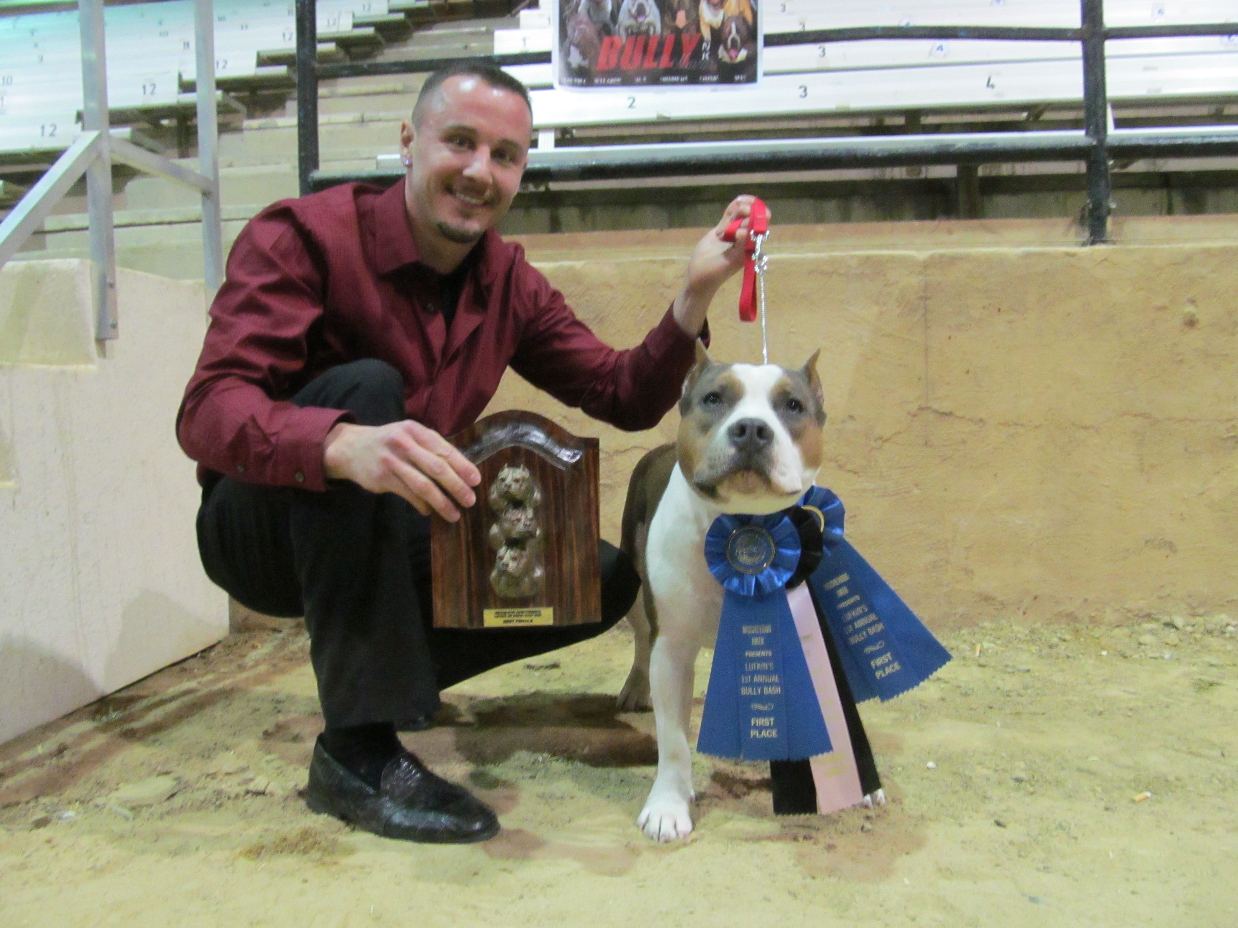 Low Low Jones Aka Mischa 1st Place Best Reserve Female And Best