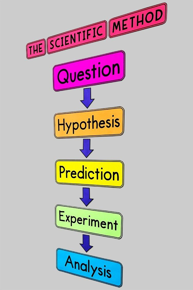 My Math Resources The Scientific Method Bulletin Board Poster Scientific Method Scientific Method Questions Math Resources