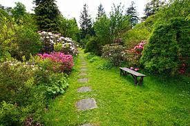 Afbeeldingsresultaat voor groene tuin