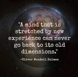 Stretch Your Mind Discover New Dimensions Powershot Quote
