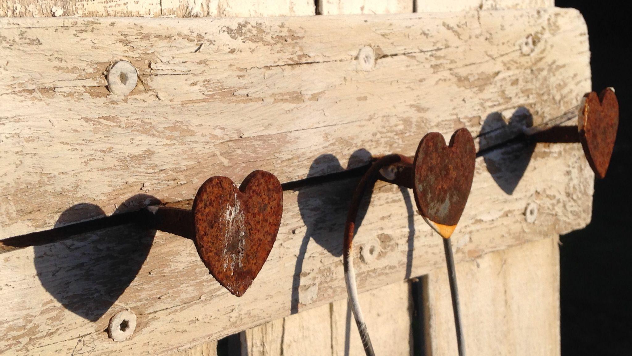 Hearts ❤️