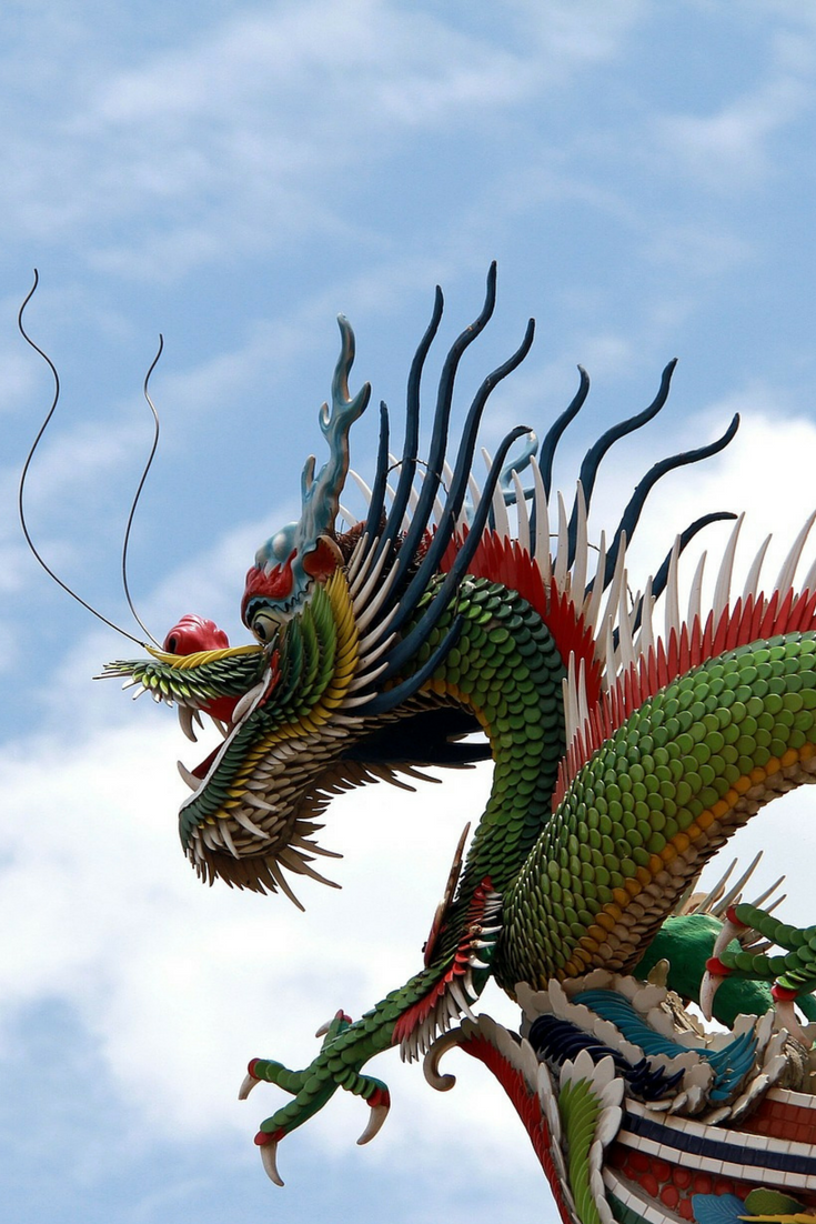 Chinese dragon - a symbol and one of the wonders of the Middle Kingdom 100