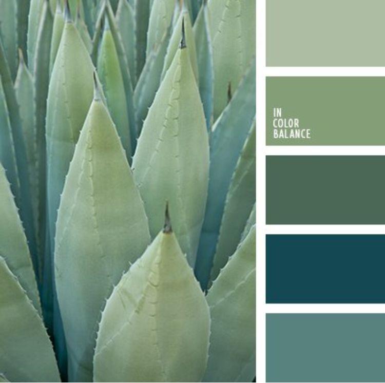 #colorschemes #green #blue