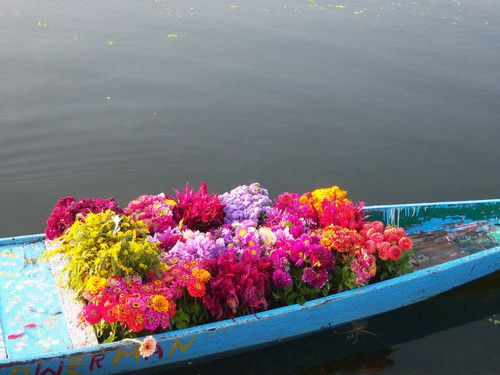 Srinagar, dal lake: Road Trip to Kashmir Valley by dushyant_fst on Flickr.