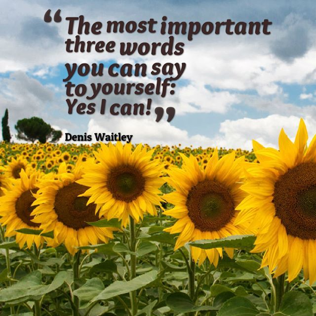 You Can Do It If You Think You Can It Is All Up To Your Mind Sunflower Garden Sunflower