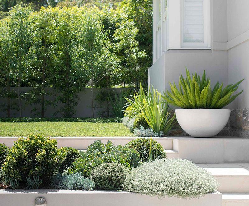 Weißer Pflanzkübel im Vorgarte -moderne Gartengestaltung mit
