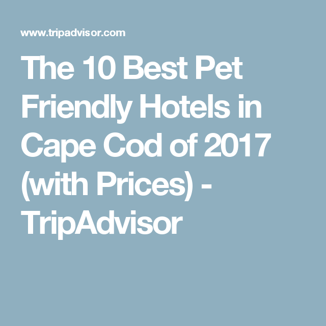 Nice Pet Friendly Hotels On Cape Cod Part - 5: The 10 Best Pet Friendly Hotels In Cape Cod Of 2017 (with Prices) -