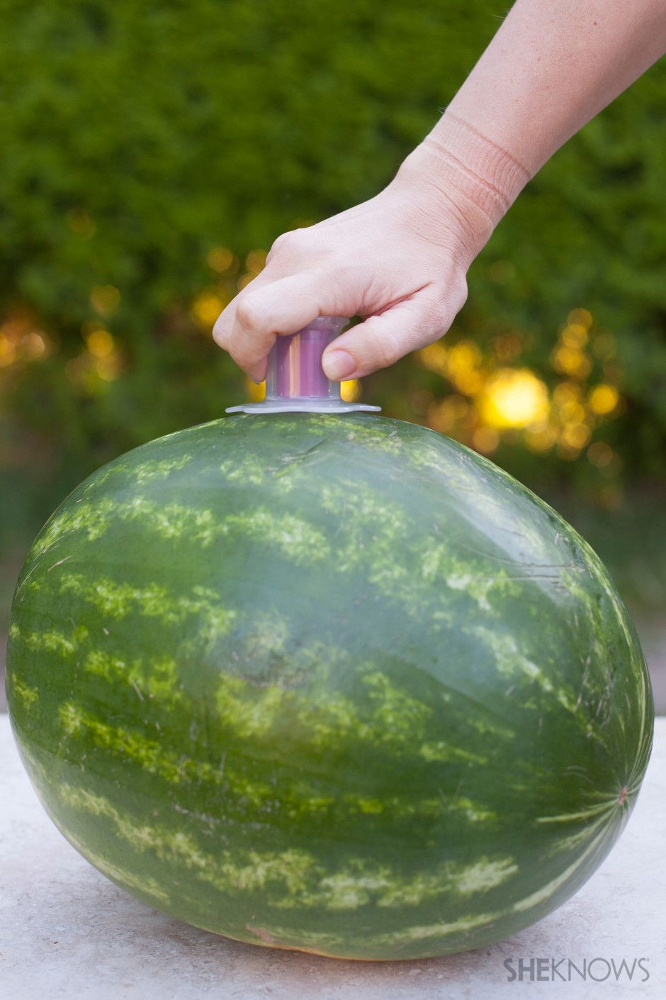 how to infuse watermelon with alcohol