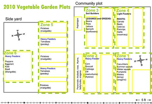 Vegetable plant families chart microsoft powerpoint crop rotation plans also rh pinterest