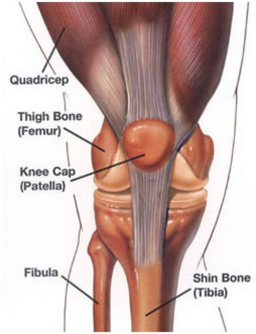 What is Knee Pain? Causes, Symptoms, Diagnosis and Treatments | Knee ...