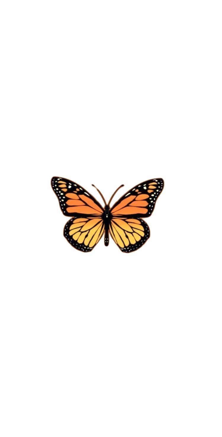 Building butterfly aesthetic arrangement aesthetics photo, resolution 2600×1733 pixel, image type jpg / psd, free download and free for commercial use. Pin by Patrycja Lisowska on Apple | Butterfly wallpaper ...