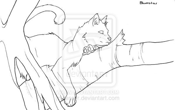 Cat In A Tree Warrior Cats Cat Coloring Page Warrior Cat