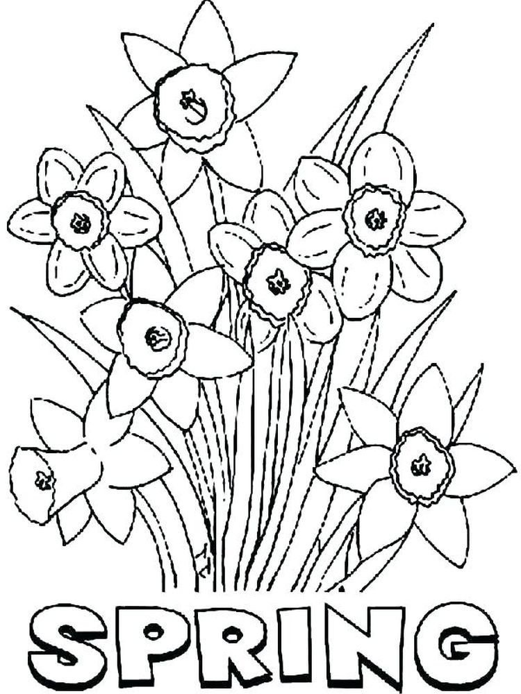 Free Spring Flowers Coloring Pages Download Everyone Dreams Of Spring Flowers During Winter And Look Forward To The Charm Of The First Color Of Spring Disney