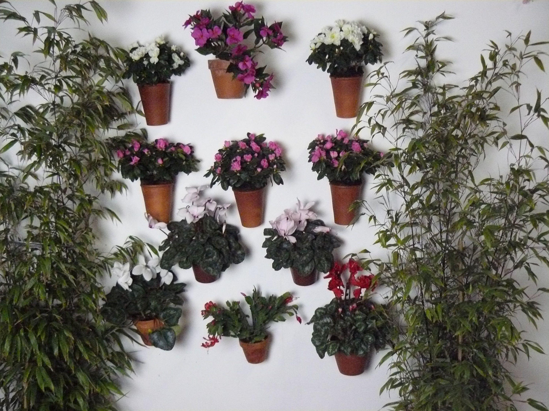 U kunt er elke soort bloempot mee ophangen Zowel kunststof potten stenen potten met of zonder rand alles kan er aan