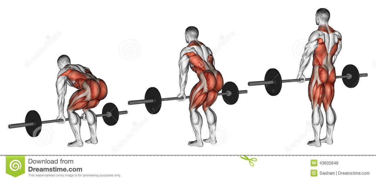 A Go To Guide For Why And How To Deadlift For Climbing Gains This Spring Deadlift Weight Training Workouts Glutes Workout