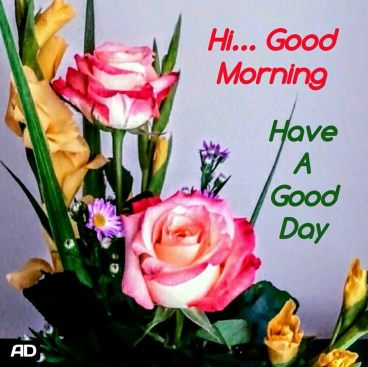 Good Morning Sister And All Have A Happy Saturday God Bless Take Care And Keep Safe Good Morning Greetings Morning Greeting Good Morning Flowers