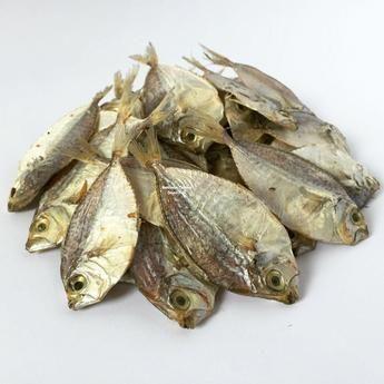 Bantayan Famous Dried Fish Sap-sap - Bantayan Famous Dried Fish