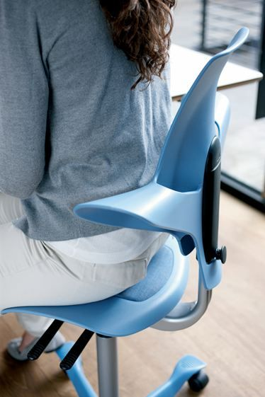 Izzy Hag Capisco Puls Reddot Design Award Winner 2011 Hag Pul Active Sitting