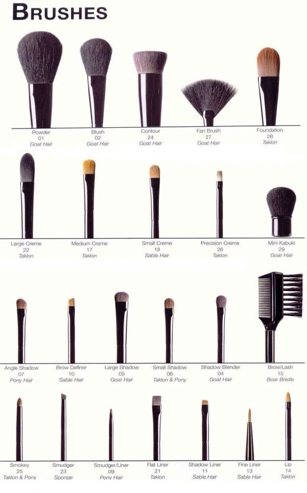 Brush Glossary Makeup Charts How To Clean Makeup Brushes Makeup Brushes Guide