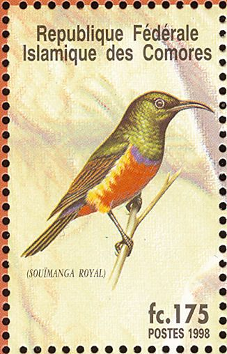 Regal Sunbird stamps - mainly images - gallery format