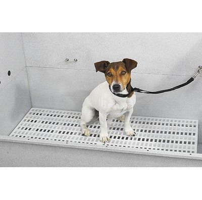 Master Equipment Grooming Tub Rack Wayfair In 2020 Pet Grooming Tub Dog Grooming Tubs Pet Grooming