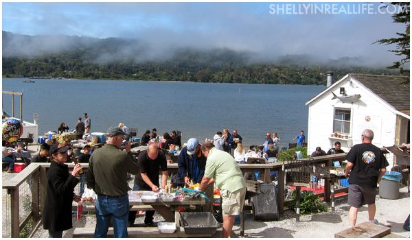 Tomales Bay Oyster Company, CA. Gather friends and family and spend a day at the oysterfarm picnicking...   A trip to the farm will clear up any winter blues.