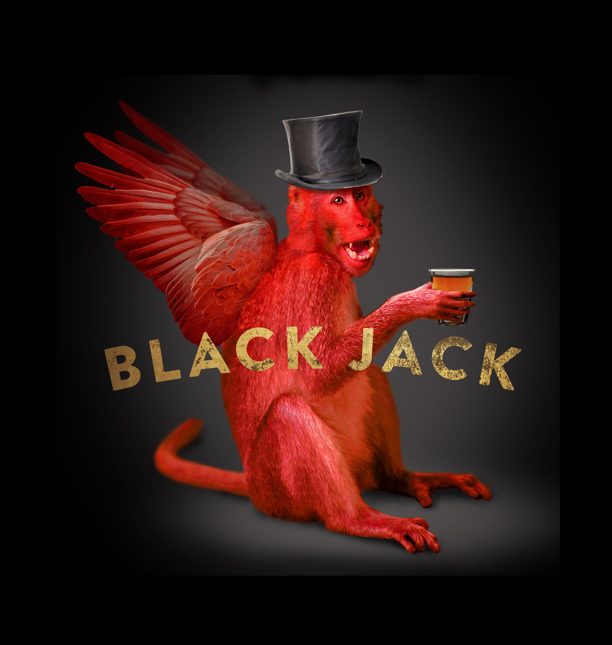 Pin by Shelter Studios, Inc. on Black Jack (With images