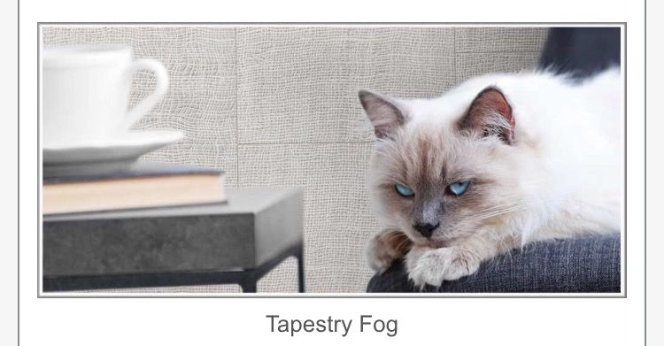 Mediterranea Tapestry color Fog Available in 12x24 ICTC Tile : Viking Distributors