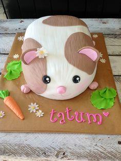 By Kaylee Haman Cute Hamsterguinea Pig Cake  Cakes - Hamster birthday cake
