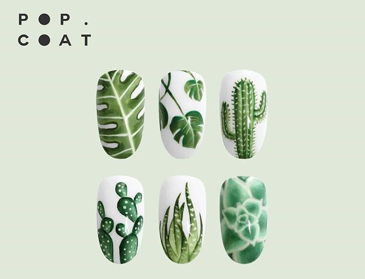 Cacti, Succulents, Palms | Ideas | Pinterest | Diseños de uñas ...