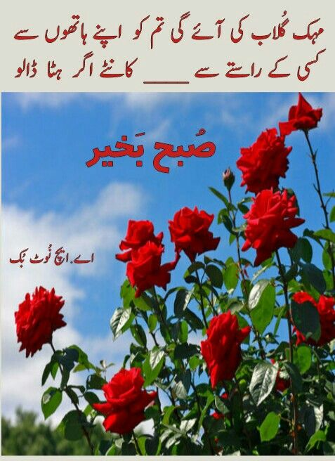 Pin By Faiza Muneer On Suba Bakhair Assalamualiakum Nice Poetry Photo Quotes Cool Words