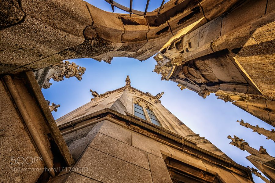 View Up by DirkSeifert