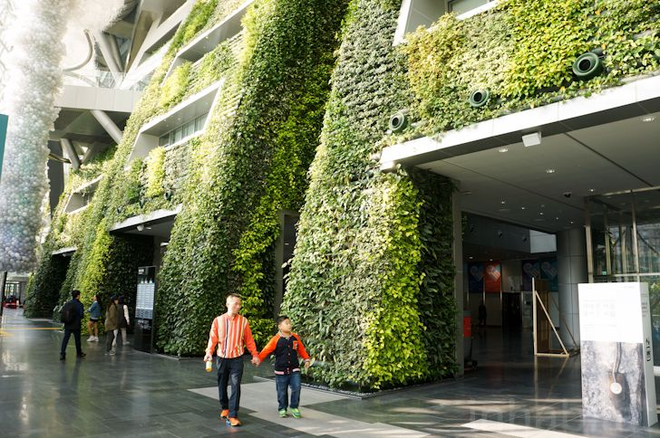 7Story Indoor Green Wall is an Enormous Air Filter for